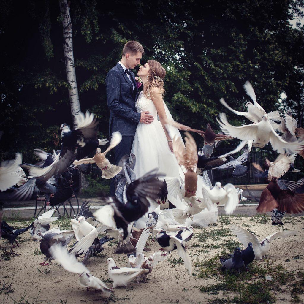 Молодожены с голубями